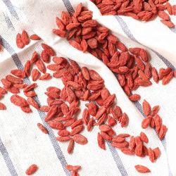 2018 Secas de colheita de frutos de bagas Goji orgânico