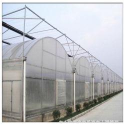 [فركري] سعر طماطم زهرة منزل لفن فولاذ إطار [مولتي] نظام الري بالأيونية نفق بولي بيت بلاستيكي أخضر