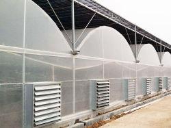China Agricultura Casa prefabricados para produtos hortícolas/frutas/Flores