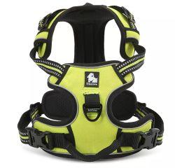 Le réflecteur réglable Pet de plein air Veste Gilet réfléchissant laisse de chien pour la course à pied de chien de cyclisme