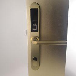 2019 Novo Barato Casa Fechadura da Porta de Impressão Digital Biométrica senha sem chave de bloqueio da porta de impressão digital inteligente Digital