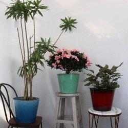 家の装飾 - 簡単な円形プラスチック花の火鍋の庭 屋内と屋外の両方にセラミック効果を発揮するプランター