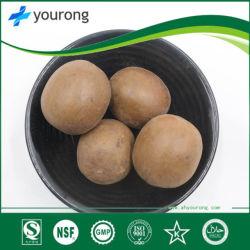 Siraitia Grosvenorii met Grote Geneeskrachtige Waarde, het Fruit van Corsvenor Momordica, Traditionele Chinese Geneeskunde