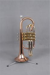 Cornet عالية الجودة (CO-655L) / Brass Instrument Cornet
