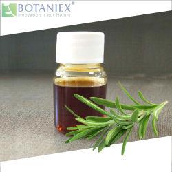 ベストセラー品質のローズマリーのRosmarinusのOfficinalisのすべての自然なエキスは、溶けるローズマリーの酸化防止剤のエキス5% Carnosicの酸に油をさす