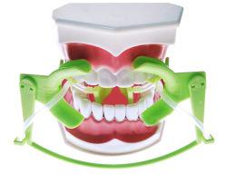 흡입을%s 가진 치과 건조한 필드 시스템 조정가능한 뺨 Retractor