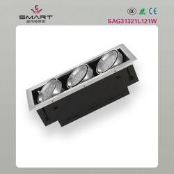 إضاءة مشواة LED للطاقة (SAG31221L121W)