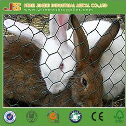 Caliente la venta de malla de alambre tejido hexagonal para el pollo de la jaula conejo