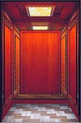 Mrl Lift van het Huis van de Lift APSL van de Villa van de Lift van de Lift van het Huis de Privé