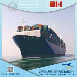China-EUA/Canadá Fba Agente Marítimo Serviço como Sea&ar.