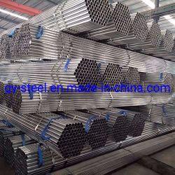 Faible coût Hight qualité Polytunnel Serre de tuyaux en acier galvanisé