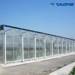 La construcción de invernaderos productos agropecuarios Multi-Span láminas de policarbonato de gases de efecto para la Flor