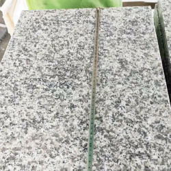 Cheap Rosa Beta Bianco Sardo G623 pour le comptoir de granit/Paving/Granite Tile/Flooring/dalle