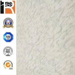 Hoja de HPL de mármol blanco (CP-34)