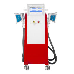 Machine van de Apparatuur van de Schoonheid van Coolsculption/de Koele van de Zuiging van de Vorm Cryolipoly Vette voor Vet Verlies