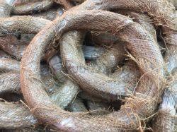 Style iraquien Bwg20*2kg/rouleau de fil de liaison électro-galvanisé