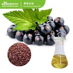 Huile essentielle de gros d'usine de 100 % Pure organiques naturels Soins De La Peau de la santé de qualité alimentaire Huile de graines de cassis