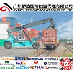 Snelle Logistiek die van Shenzhen /Guangzhou/Xiamen/Shanghai/Dalian aan Manitoba verschepen