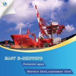 China-Berufsverschiffen-Agens zu weltweit