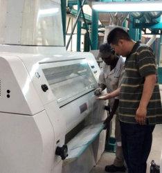 El maíz el trigo harina de maíz de la molienda molino de harina de sémola de la planta de procesamiento que hace la máquina
