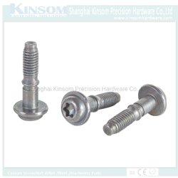 주문 놀이쇠 또는 스페셜 놀이쇠 /Steel 놀이쇠 또는 Torx 플랜지 헤드 놀이쇠
