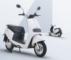 دراجة مغرفة كهربائية بالعجلات الأكثر عصرية تتسع لـ Adult Electric دراجة نارية 10'' مع بطارية حمض الرصاص