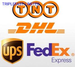 Agente de transporte Transitarios DHL FedEx, UPS de China EMS TNT