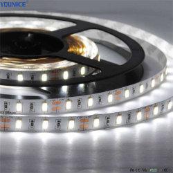 IP54 صمغ DC24 فولت 60 صمام ثنائي باعث للضوء (DCC) مقاوم للماء من السيليكون في وعاء السيليكون/M 50 مم، قص 9,6 واط شريط LED مرن