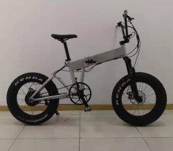 2019 電動バイク / 48V 750W Fat Tire Foldable Electric Bicycle / Folding E Bike