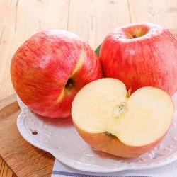 Grau superior a China Vermelha Doces de maçã fresca maçãs FUJI Apple