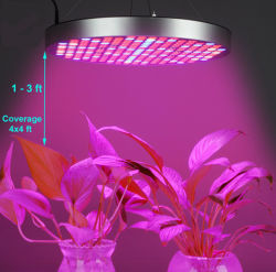 50w Hydroponic Rood Blauw Wit Volledig Spectrum Greenhouse Ufo Led Grow Light