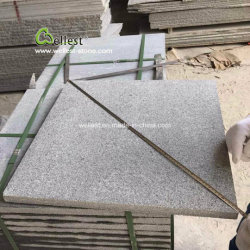 Popular G654 Padang Dark Grey of granites for Kitchen Countertop/Bathroom Vanity Top/whale Tile/Floor Tile/step