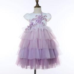 I bambini dei vestiti della principessa neonate di cerimonia nuziale di compleanno del partito del vestito dalla ragazza di fiore di modo scherza i vestiti