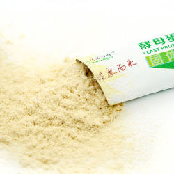 Polvere non GMO, alimento della proteina del lievito del Vegan