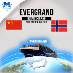 De professionele Overzeese Verschepende Dienst van de Vracht van China aan Noorwegen/Oslo