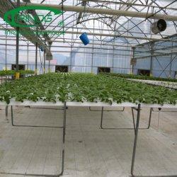 La película barata de gases de efecto que se utiliza para las setas/UVA/Pepino tomate /