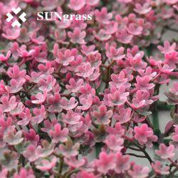 Rosa de plástico personalizada de la planta de césped artificial decorativo Pared Flor