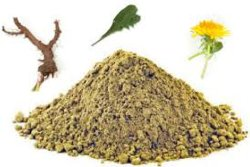 China-reiner 100% natürlicher Löwenzahn-Pflanzen/Flower/Herb-Blatt-Auszug