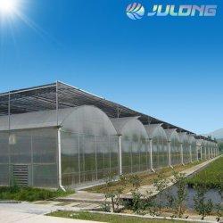 Film plastique agricole Greenhouse Engineering La conception du matériel et l'installation squelette de délestage de la construction de serre