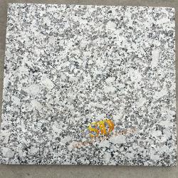 중국은 채석장 옥외 층계 및 벽 도와를 위한 백색 화강암 Bala 꽃 화강암을 소유한다