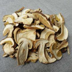 Séché Boletus edulis porcini mushroom séchés