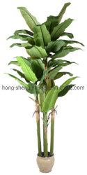 常緑の人造のガラス繊維のバナナの木