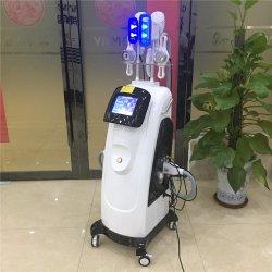 [ليبوسوكأيشن] تكهّف فوق سمعيّ [رف] تجمّد سمين [كريوليبوليسس] ينحل آلة لأنّ منتجع مياه استشفائيّة إستعمال