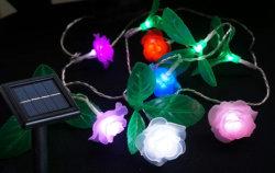 Цветок солнечной энергии на открытом воздухе под руководством String лампа