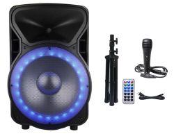 Haut-parleur actif de 15 pouces Boîte avec lumière RVB et microphone