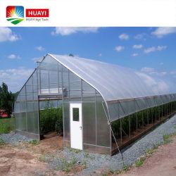 Индивидуальные пластиковые пленки Лист из поликарбоната сельскохозяйственных Multi-Span один Span теплицы готового проекта с гидропоники системы для овощей