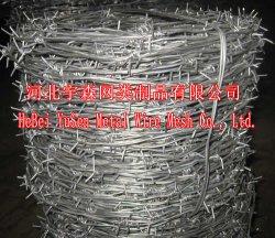 高品質のバーベッド用鉄ワイヤ