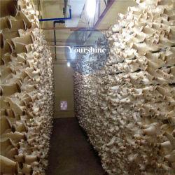 Entreposage à froid pour la plantation de champignons avec fonction de commande des gaz