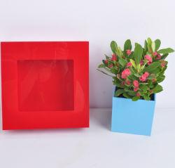 Produits de jardin de plantes de décoration d'accueil
