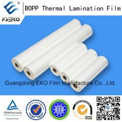 """Pellicola laminatrice per applicazioni in bobina piccola BOPP 24mic 310 mm*200m*1"""""""